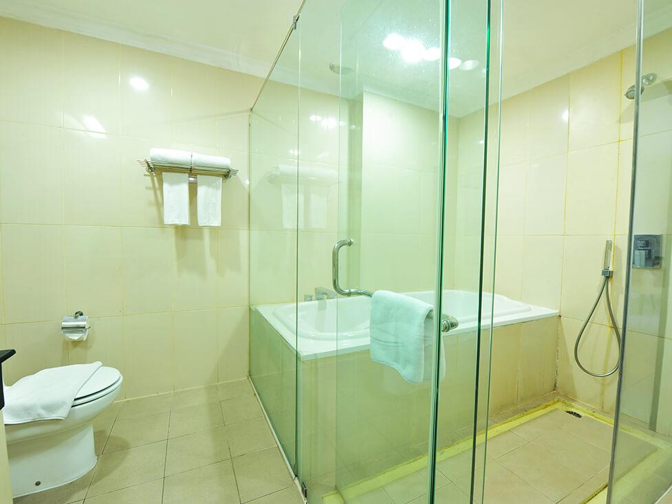 Suite Room - Bathroom